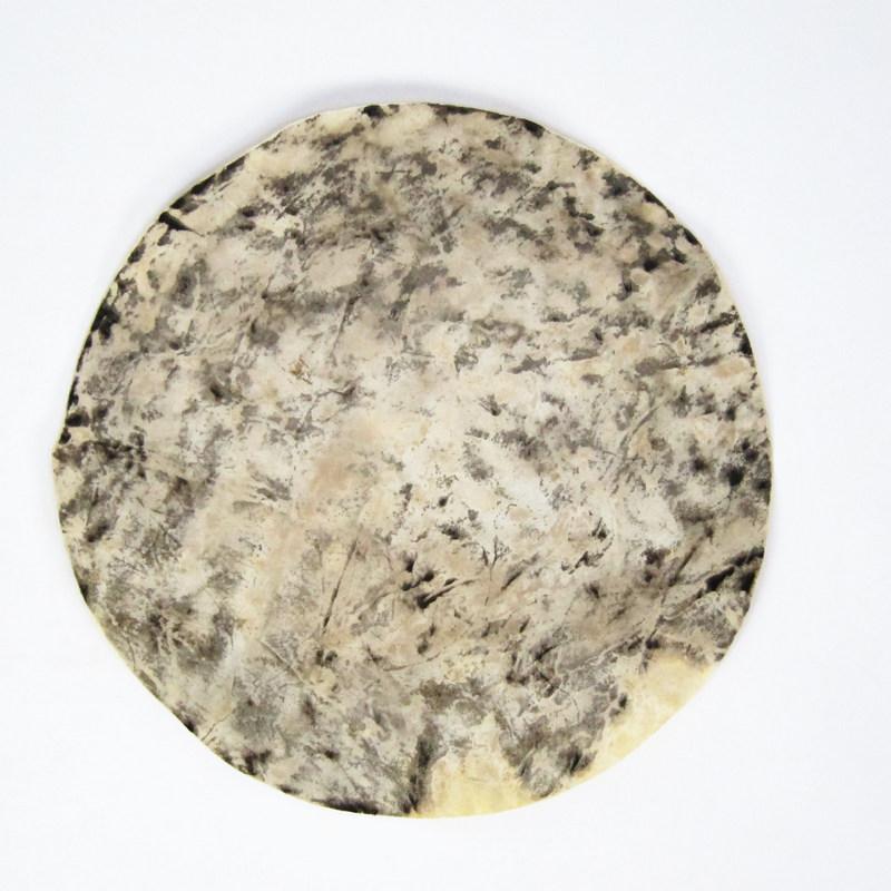 Disc-Cow-Indo-I